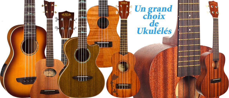 Atelier de la guitare le sp cialiste de la guitare for Porte ukulele