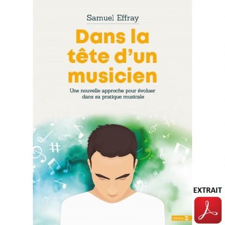 DANS LA TÊTE D'UN MUSICIEN S AMUEL EFFRAY