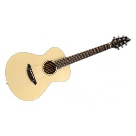 GUITARE BREEDLOVE TRAVEL E/A C200SMTRAVEL