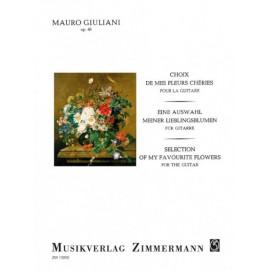 GIULIANI CHOIX DE MES FLEURS CHÉRIES ZM13050