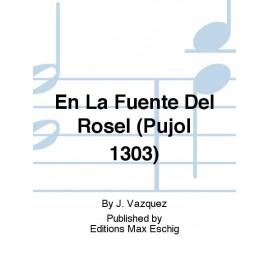 VAZQUEZ/PISADOR   EN LA FUENTE DEL ROSEL ME7269
