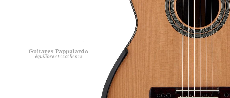 Guitares Pappalardo 2